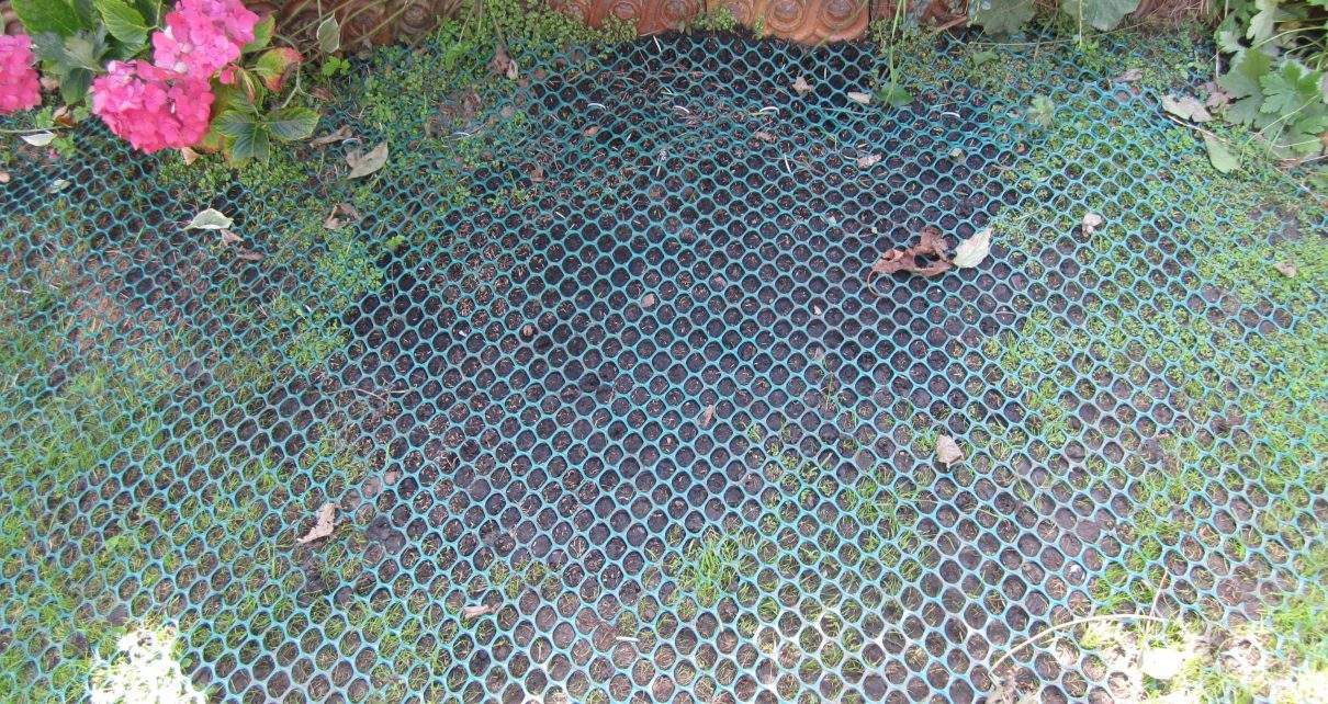GrassMesh On Backgarden - Before