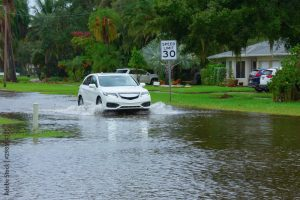 Increased urbanisation has resulted in more city surface flooding