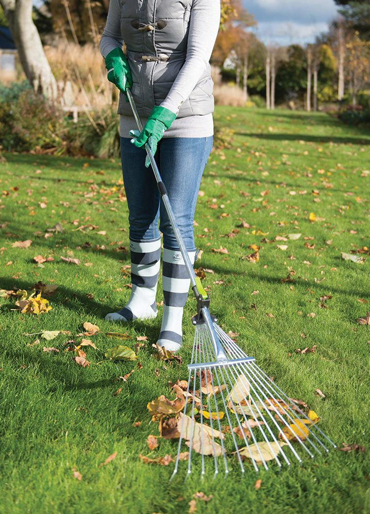 The Telescopic Rake used to remove leaves