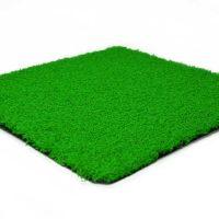 Green Coloured Grass