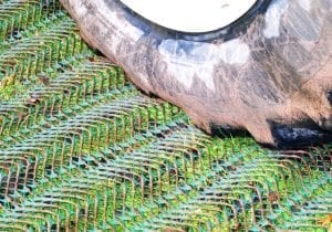 Turf Mesh Email Featured Image