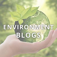 Environment Blogs Square