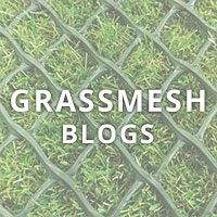 GrassMesh Blogs Square