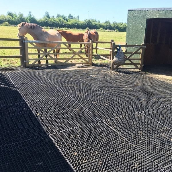 Rubber Grass Mats In Use - Equestrian