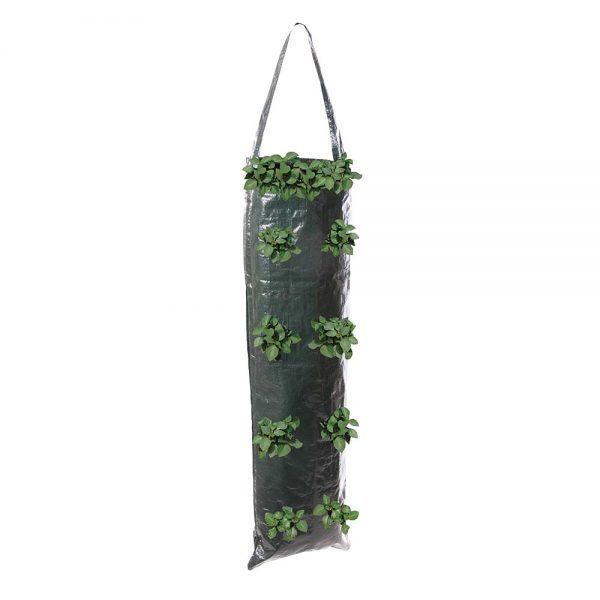 Hanging Grow Tube 2pk