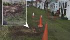 Park Avenue Case Study - Grass Access Road